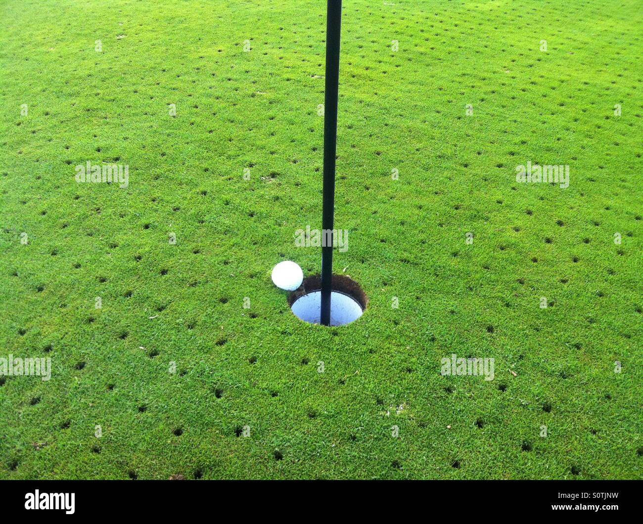 A golf ball plugged in the green right next to the hole on a par 3, very nearly a hole in one - Stock Image