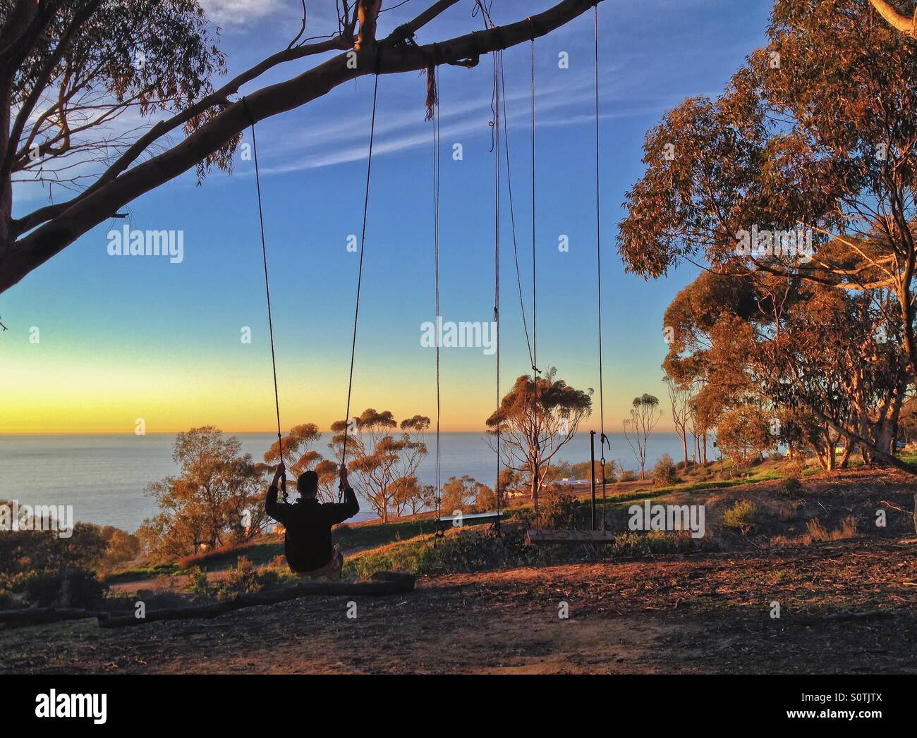 Man swinging on a swing set and enjoying a sunset view over the Pacific Ocean, La Jolla, California, USA - Stock Image
