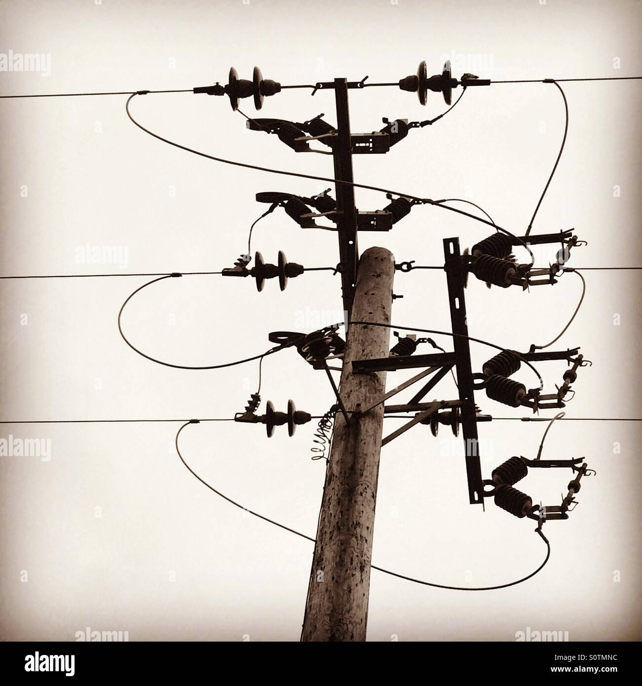 Electricity transmission cable connections on a telegraph pole. A ...