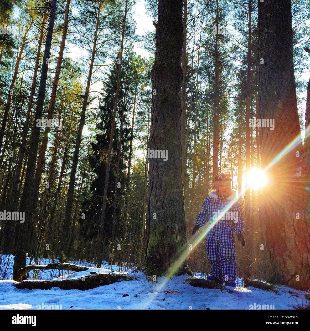 child playing in the woods in wintertime - Stock Image