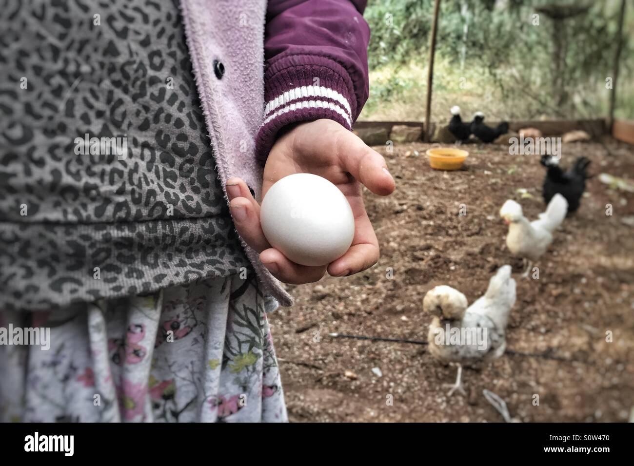 Girl holding a fresh egg Stock Photo