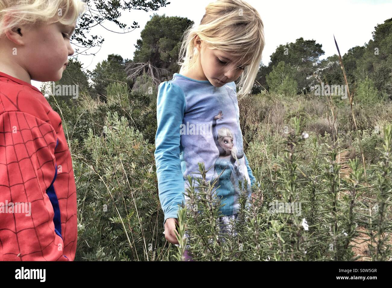 Kids in nature - Stock Image