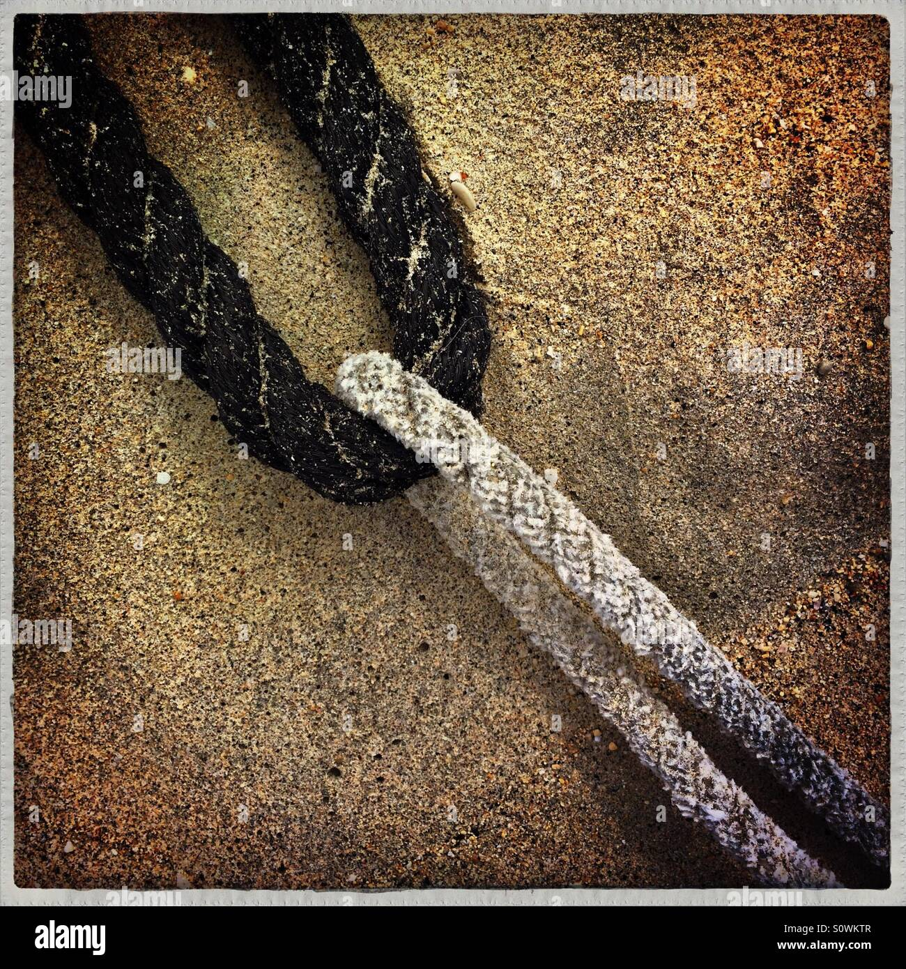Black and white ropes intertwined on sand - Stock Image
