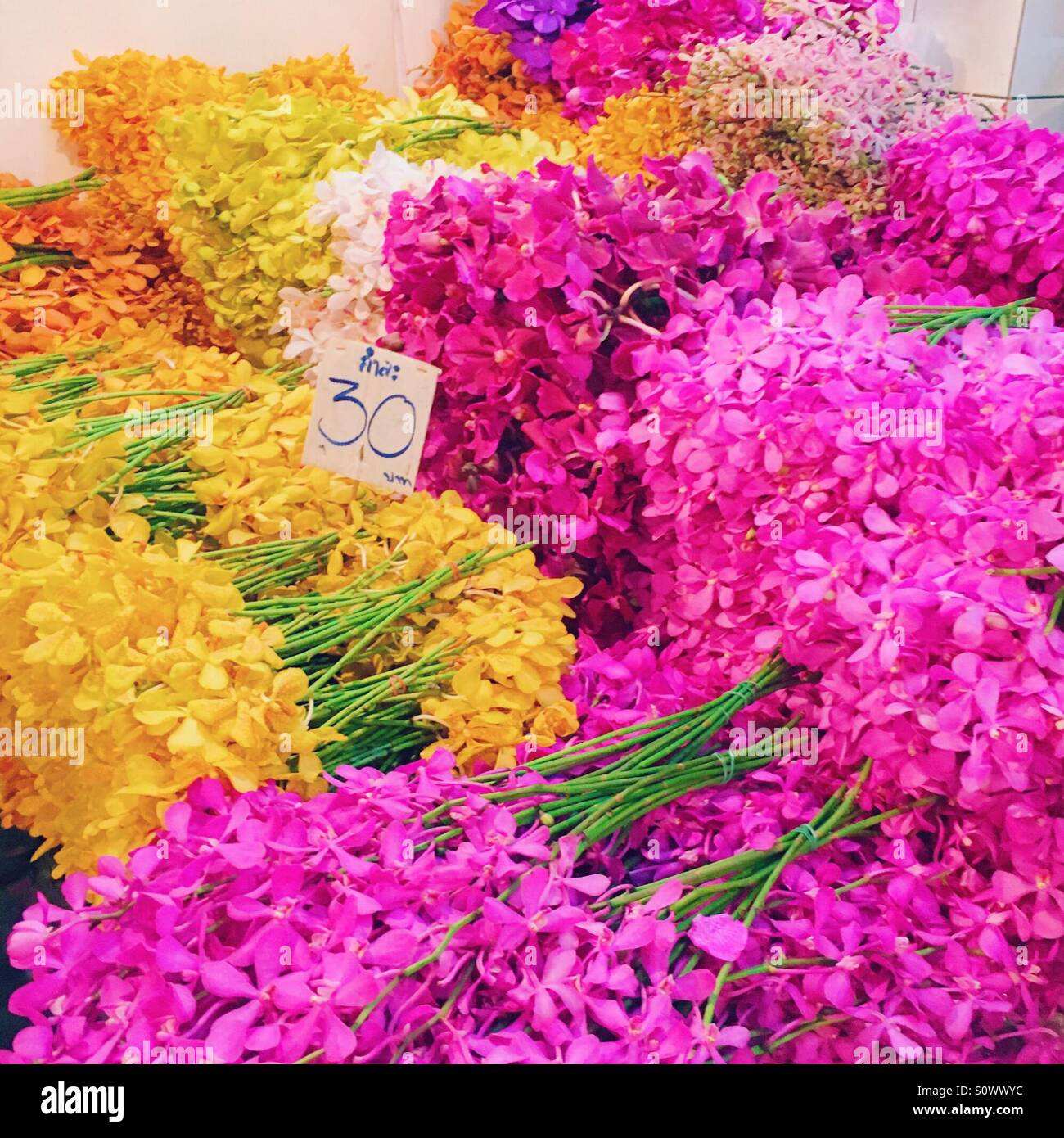 Flower market in Bangkok at night - Pak Khlong Talad - Stock Image