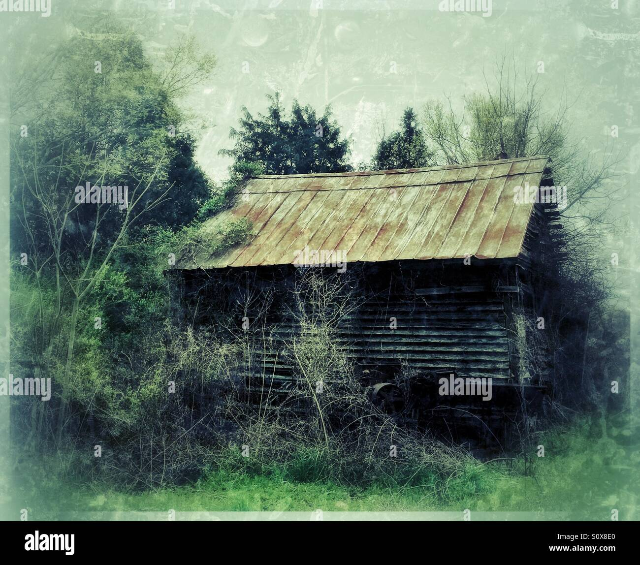 Shack with tin roof and grunge film - Stock Image