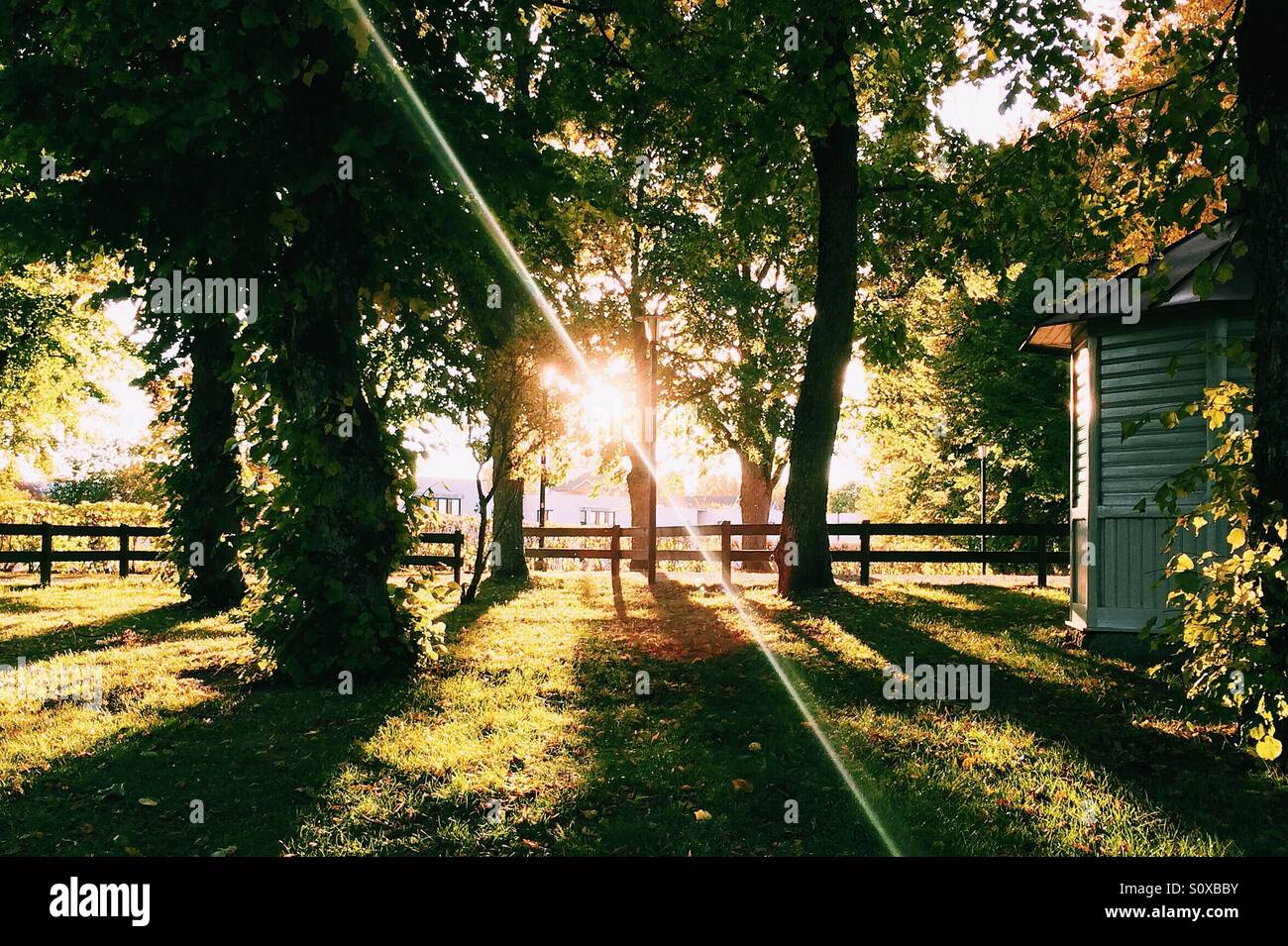 Sunset in south of Sweden - Stock Image