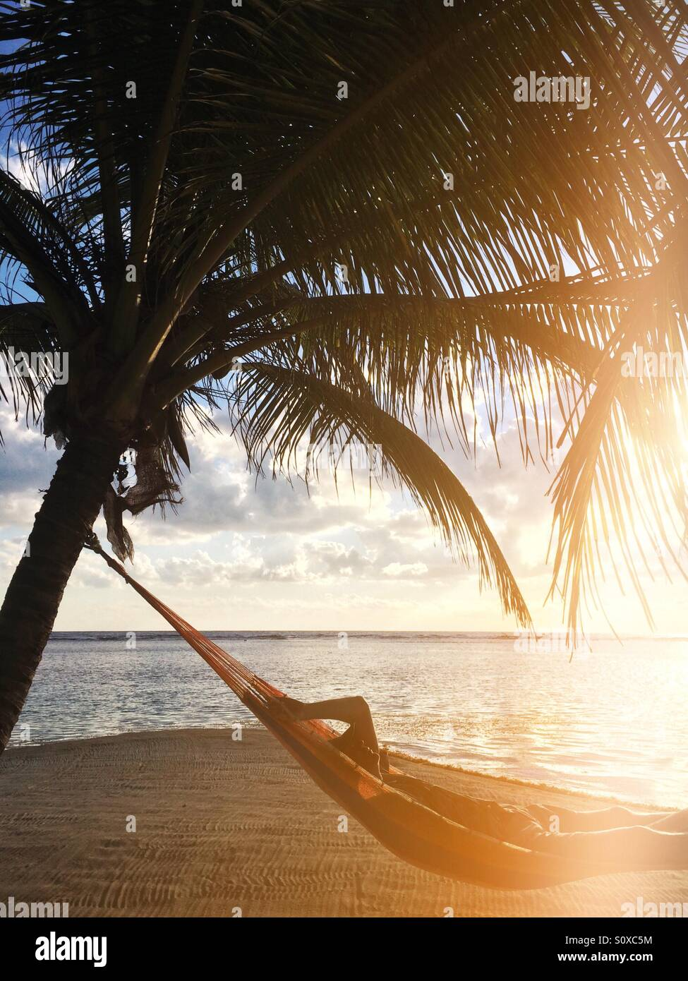 Man in a hammock, South Water Caye , Belize Stock Photo