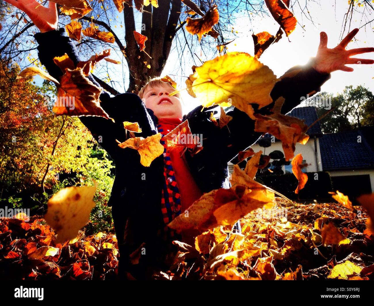Autumn fun - Stock Image