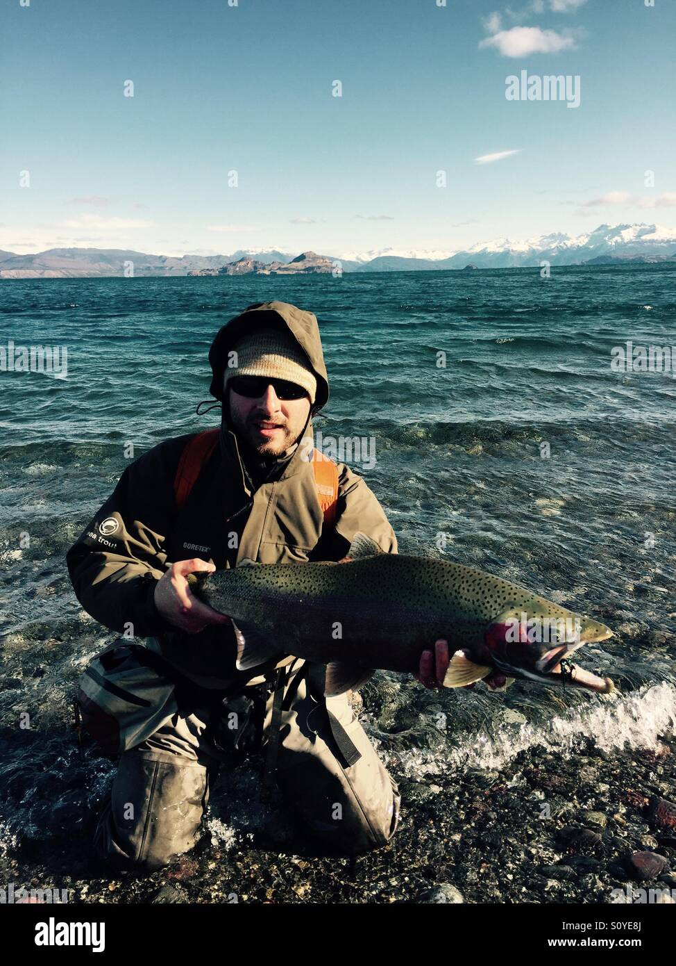 Rainbow trout, general carrera lake Patagonia chilena - Stock Image