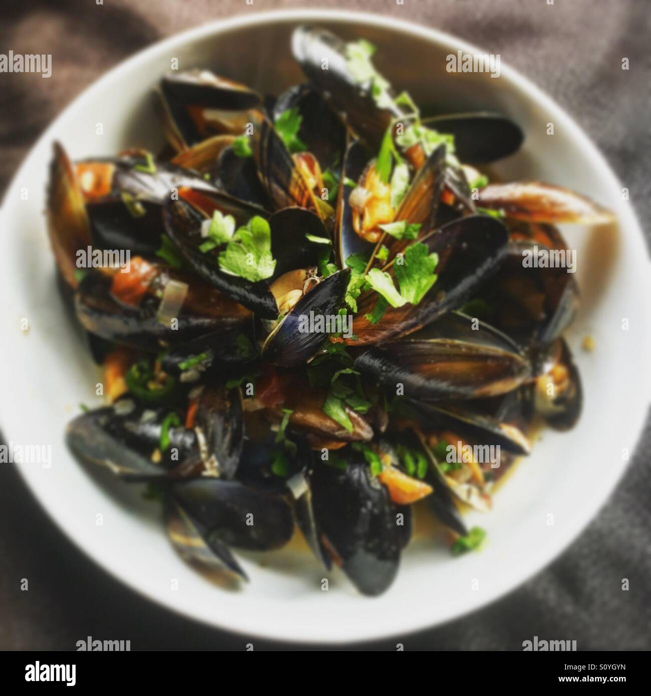 Mussels healthy seafood - Stock Image