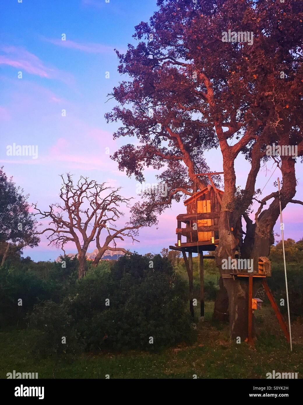 Treehouse at sunset, Olbia, Sardinia, 2016 - Stock Image