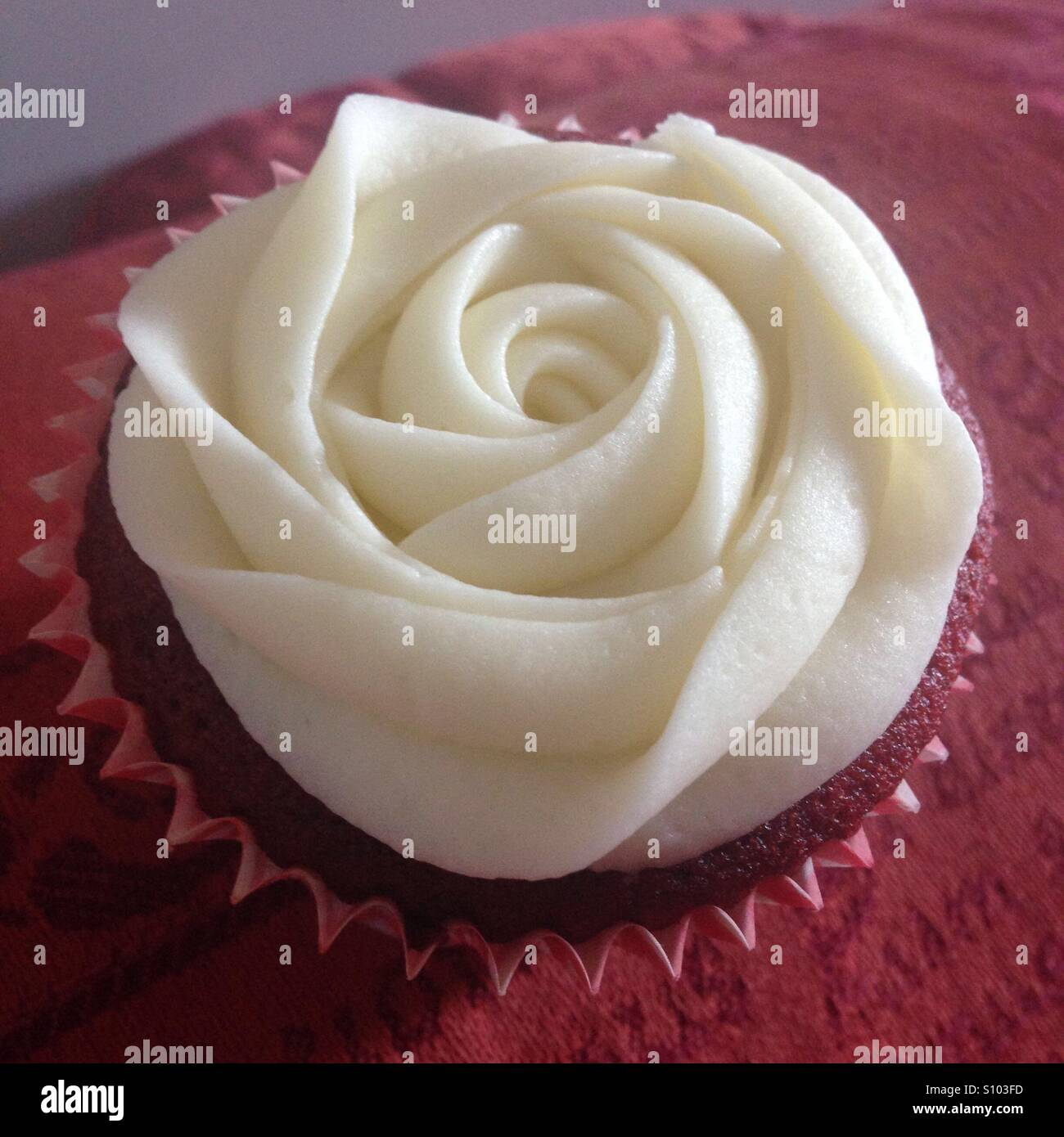 Red velvet cupcake with white rose icing - Stock Image