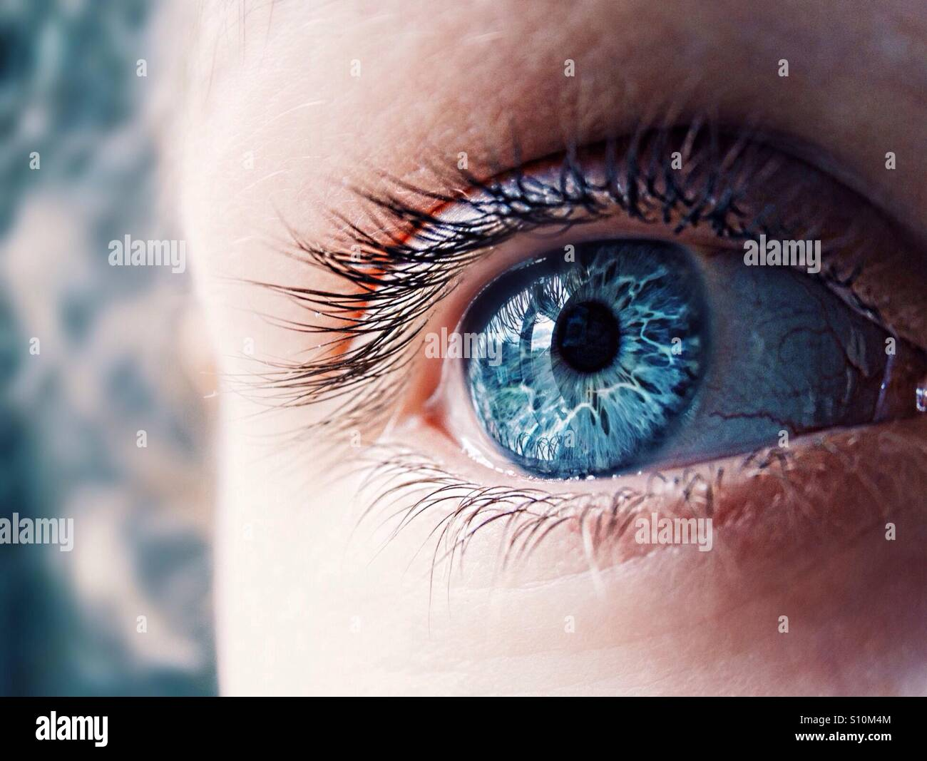 Close up of an eye - Stock Image