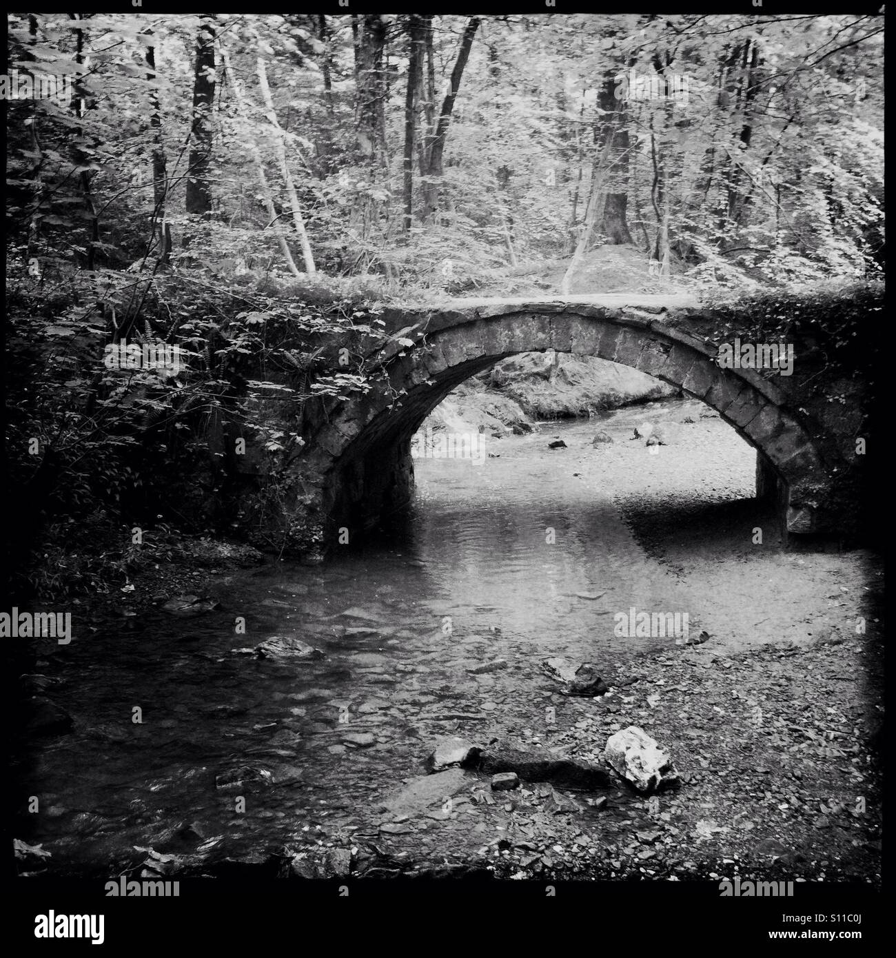 Old bridge crossing a small stream in woodlands, Wales - Stock Image