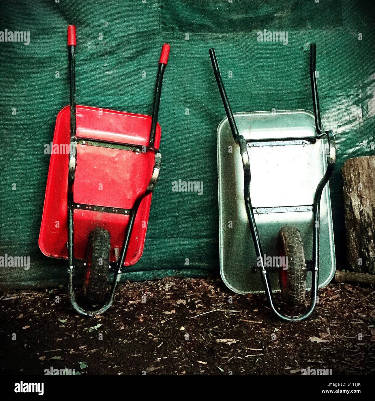 Wheelbarrows in garden - Stock Image