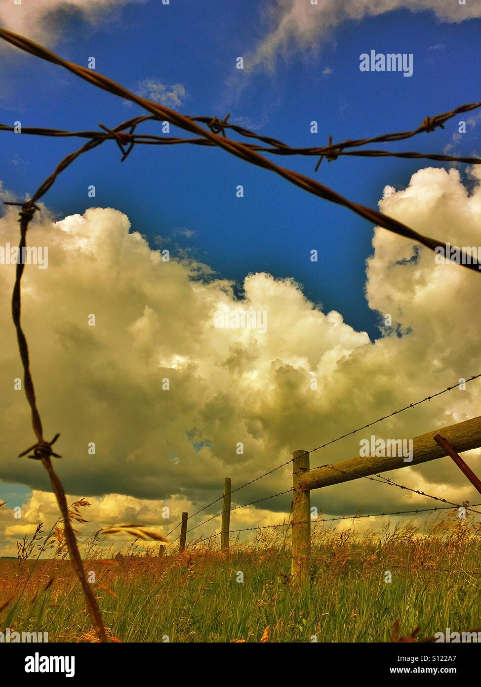 Strands of barbed wire, darned wire fence, brome grass with dramatic sky - Stock Image