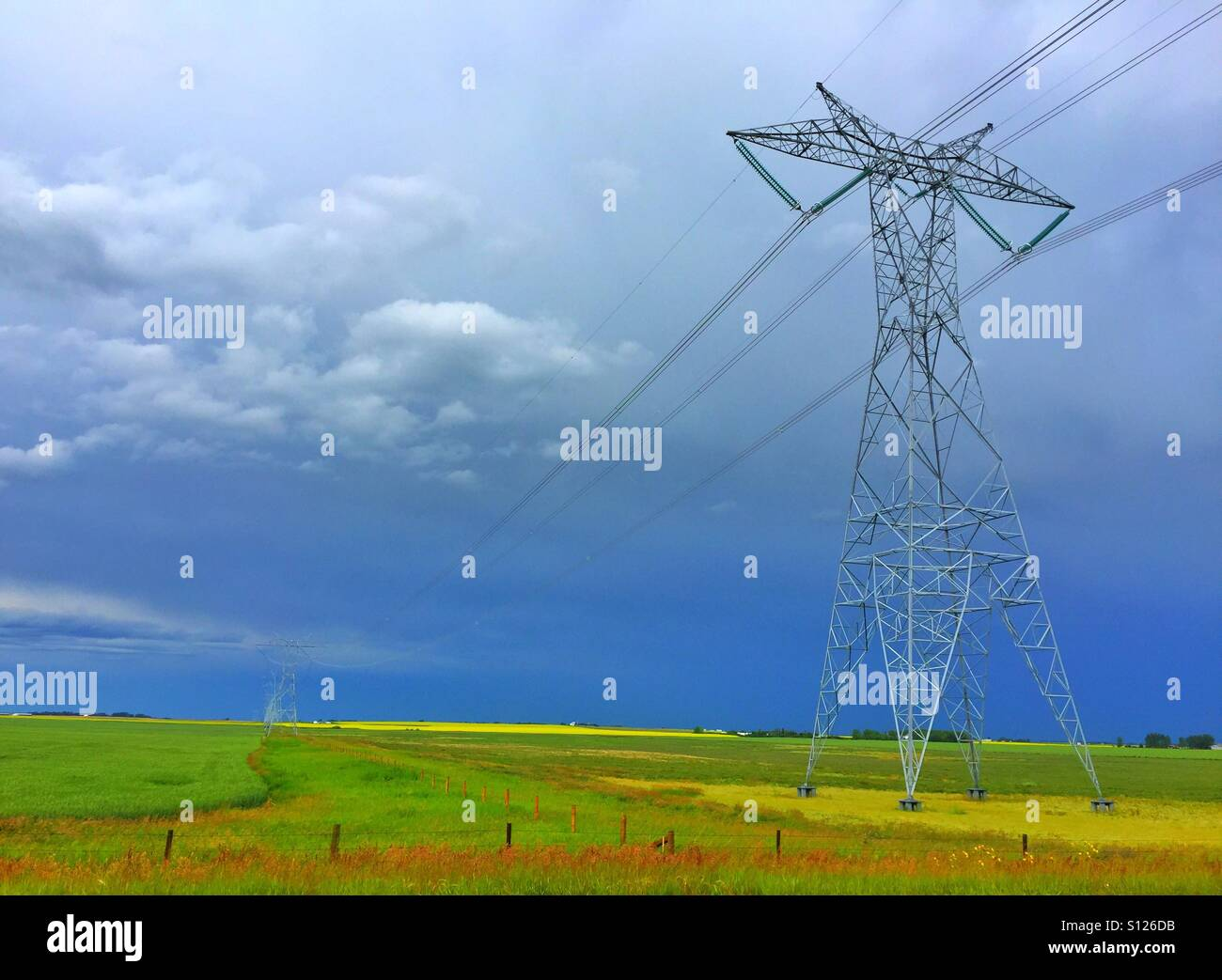 Dark skies, high tension power line and a canola field - Stock Image