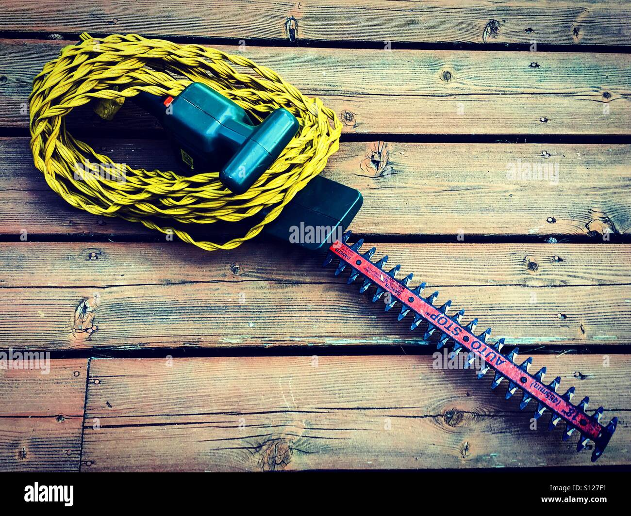 Electrical trimmer - Stock Image