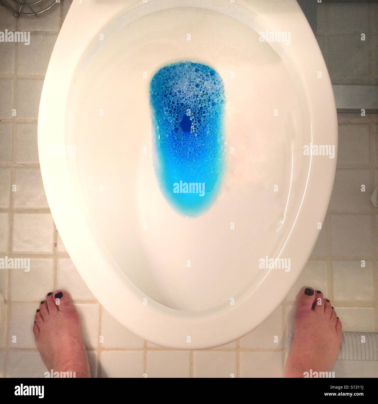 Toilet Bowl High Resolution Stock Photography And Images Alamy