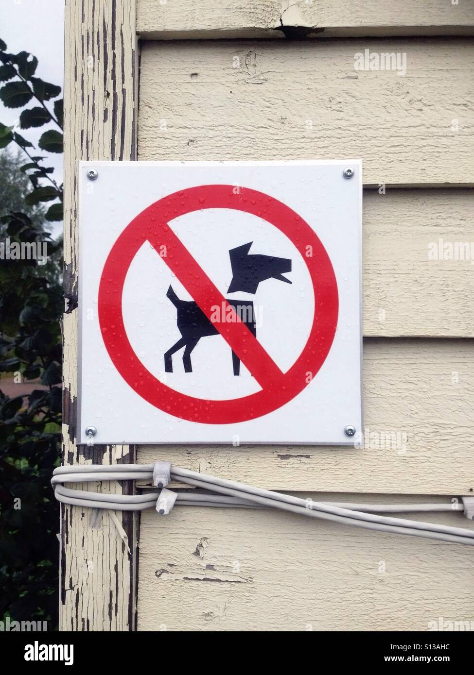 No dogs allowed - Stock Image