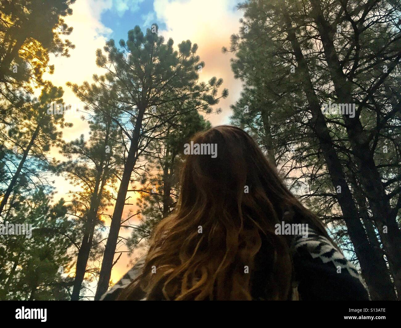 A child looks up at the forest canopy above her. - Stock Image