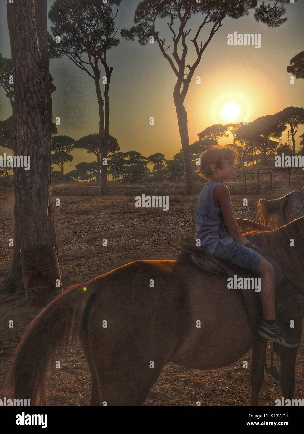 Boy kid riding a horse at sunset - Stock Image