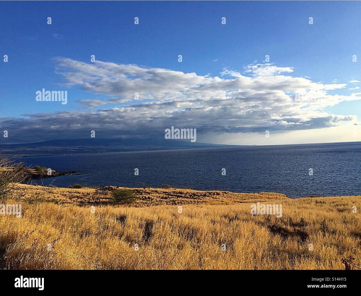 Ocean View - Stock Image