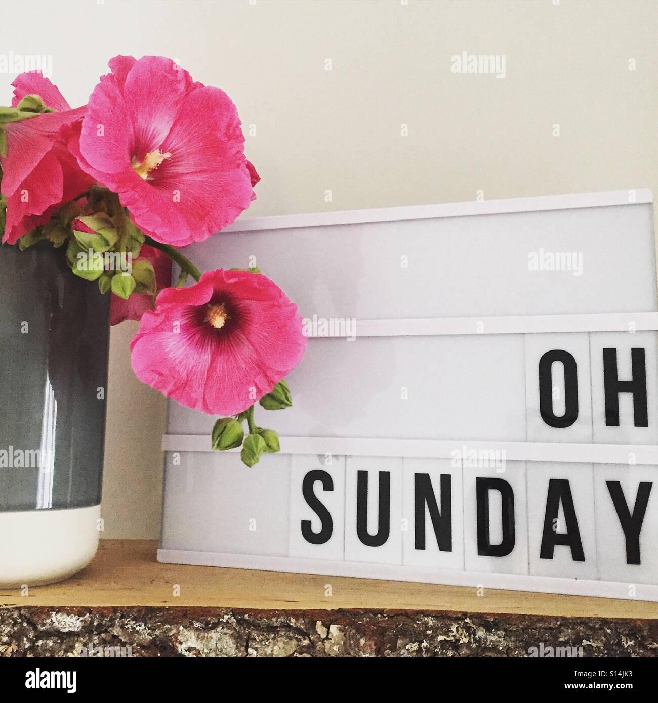 Oh Sunday - Stock Image