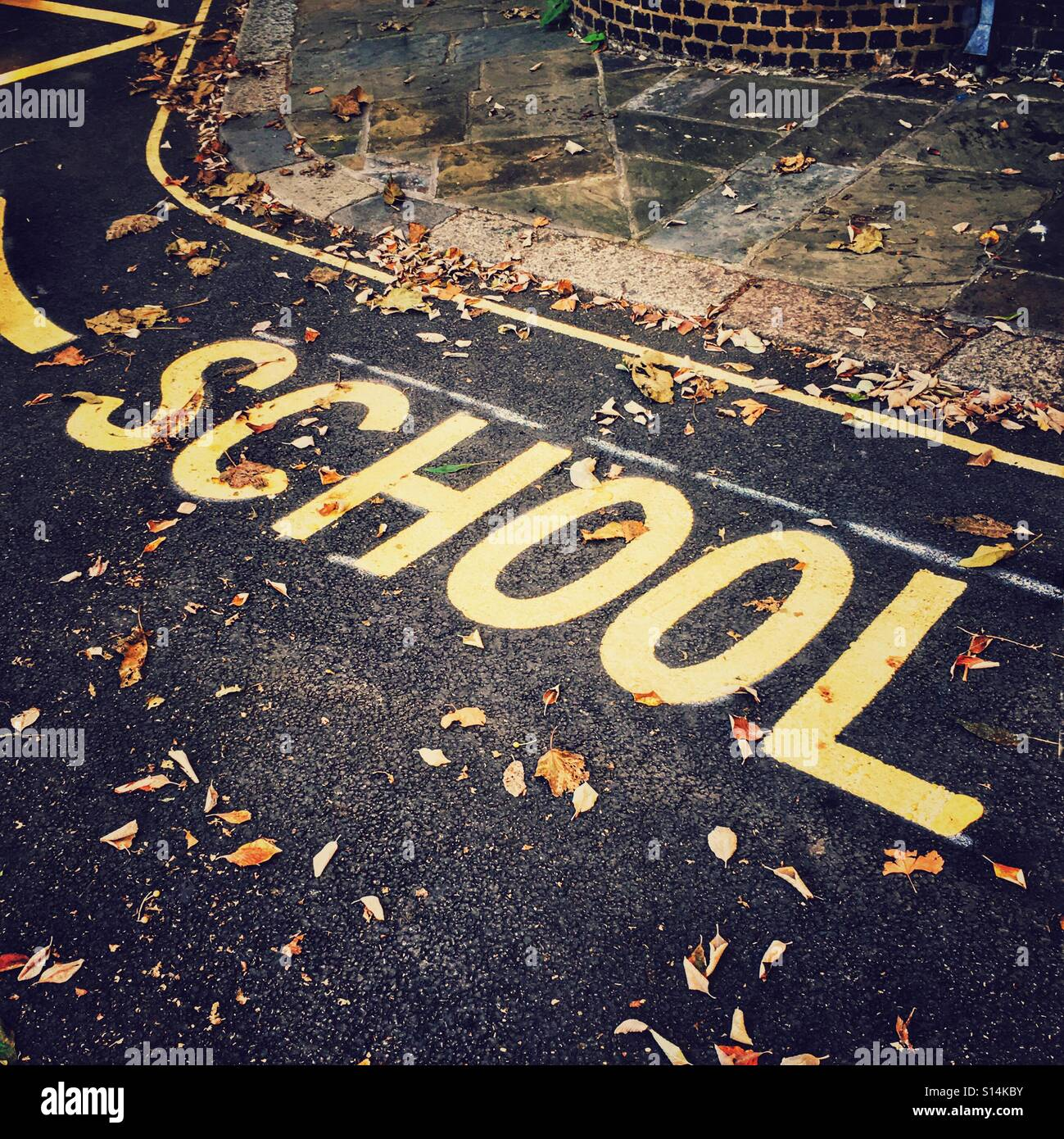 School sign with autumnal leaves - Stock Image