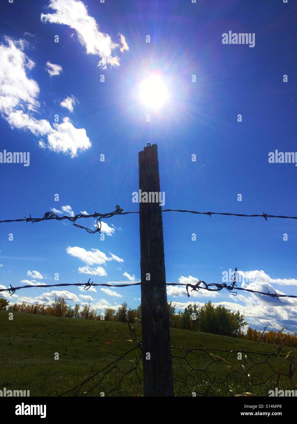 Odd fence post pointing to the sun - Stock Image