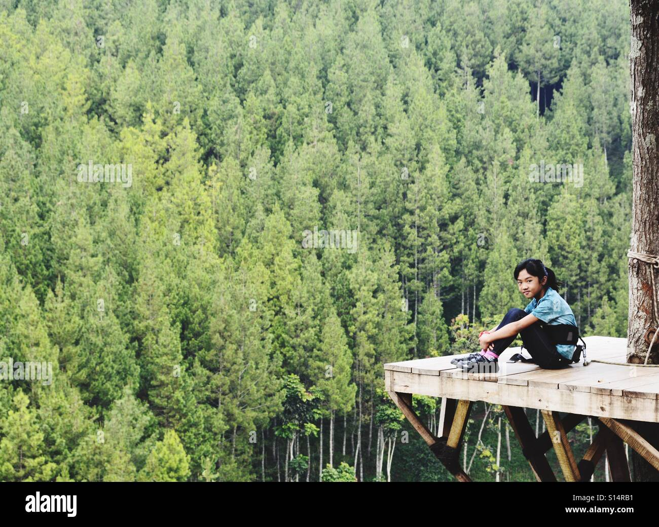A young adventurer with a head for heights. She sits on a wooden platform high above the wooded valley below. - Stock Image