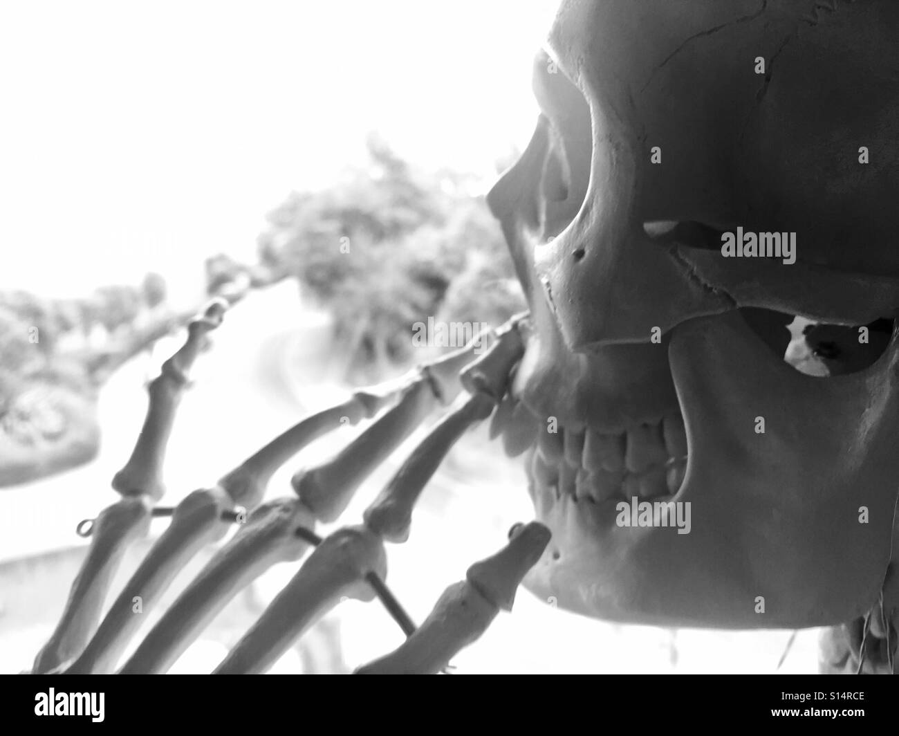 A skeleton blowing out cigarette smoke. - Stock Image