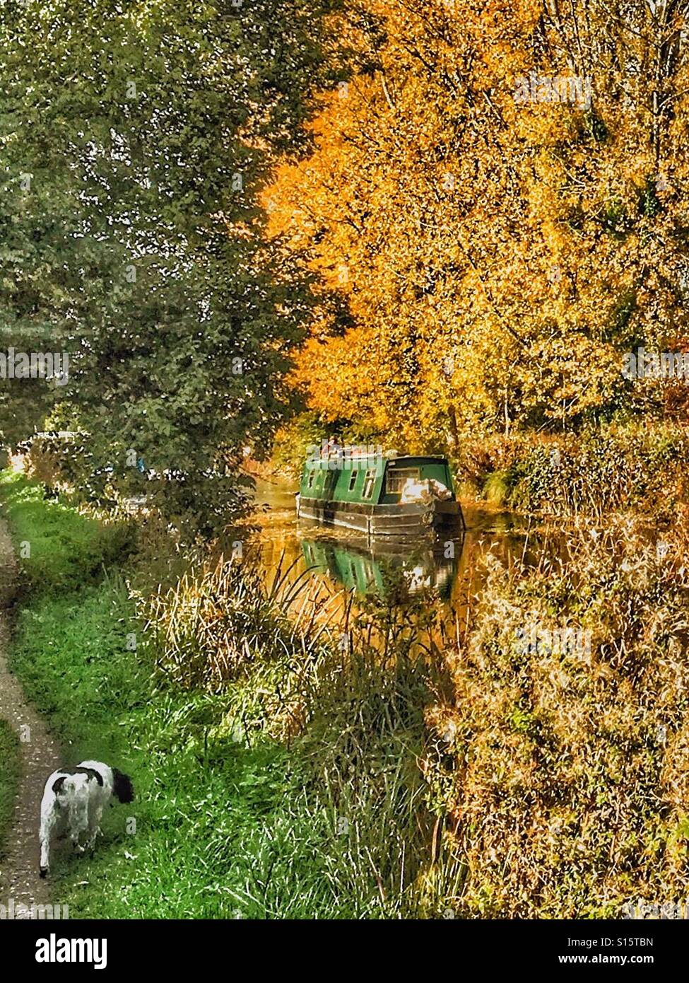 Narrow boat on the Kennet and Avon canal on Hungerford Common on a still autumn day with trees in bright autumn - Stock Image