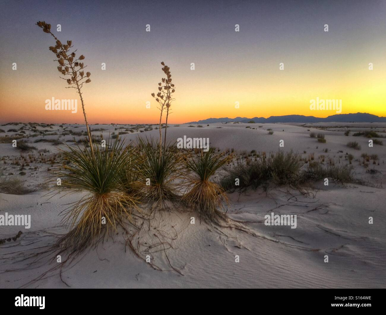 White Sands sunset - Stock Image