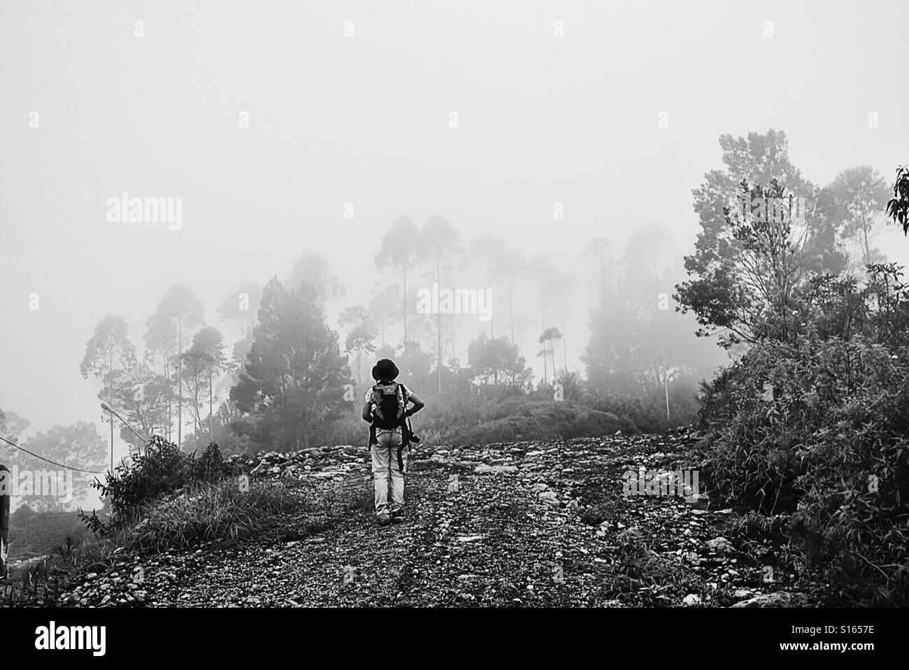 The lady who is facing the mist - Stock Image