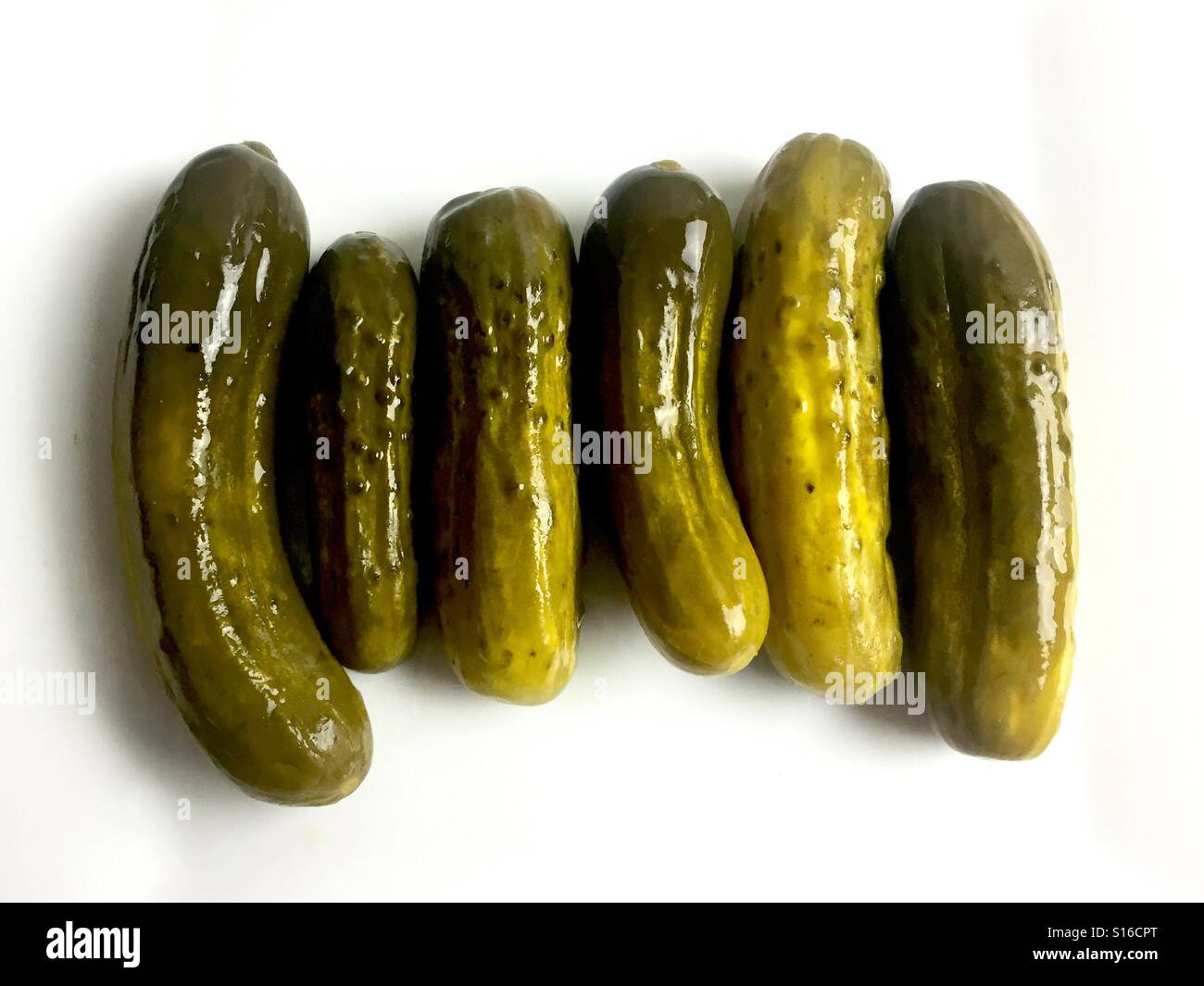 Dill pickles on a white plate - Stock Image
