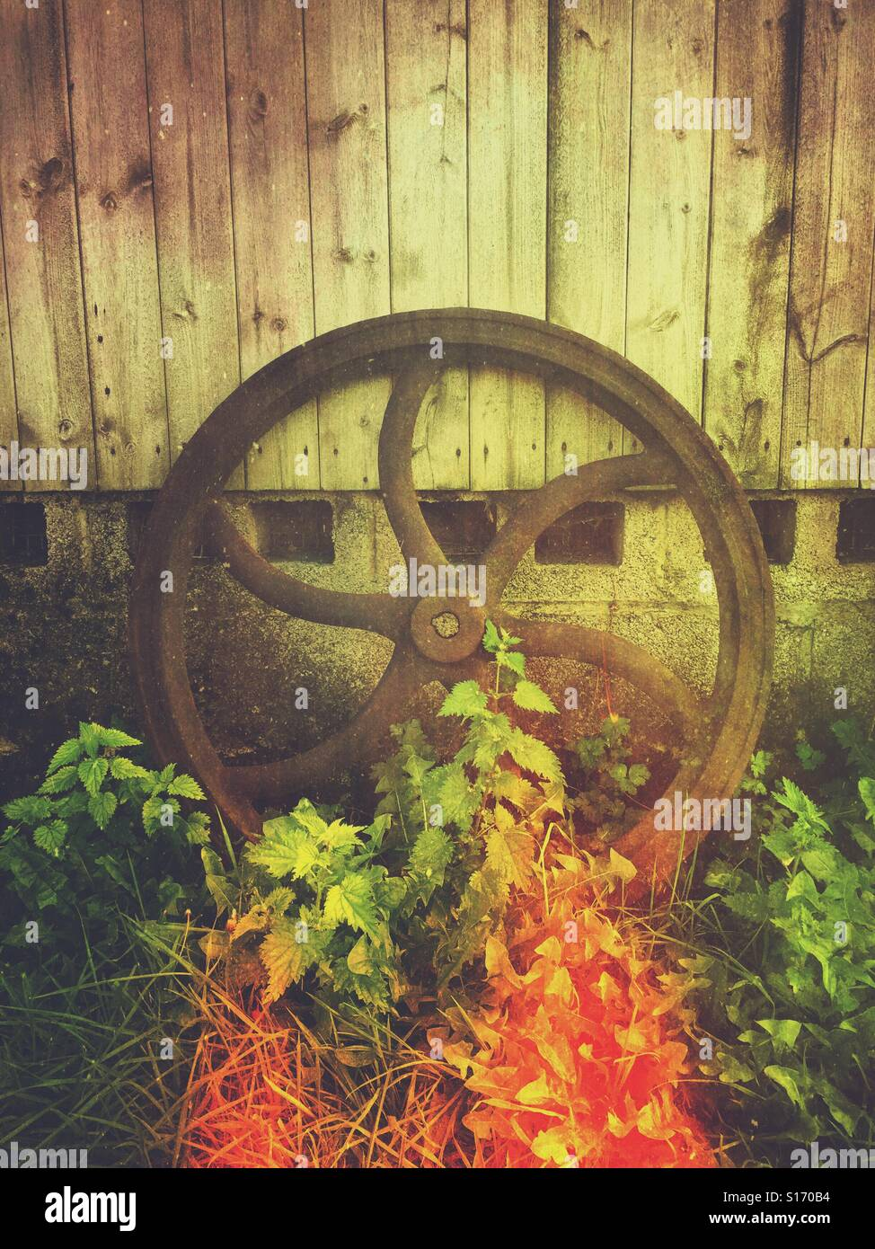 Old rusty machine wheel - Stock Image