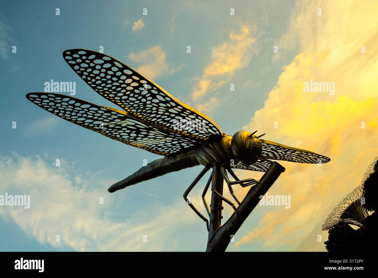 Dragonfly Sculpture Stock Photos & Dragonfly Sculpture Stock Images ...