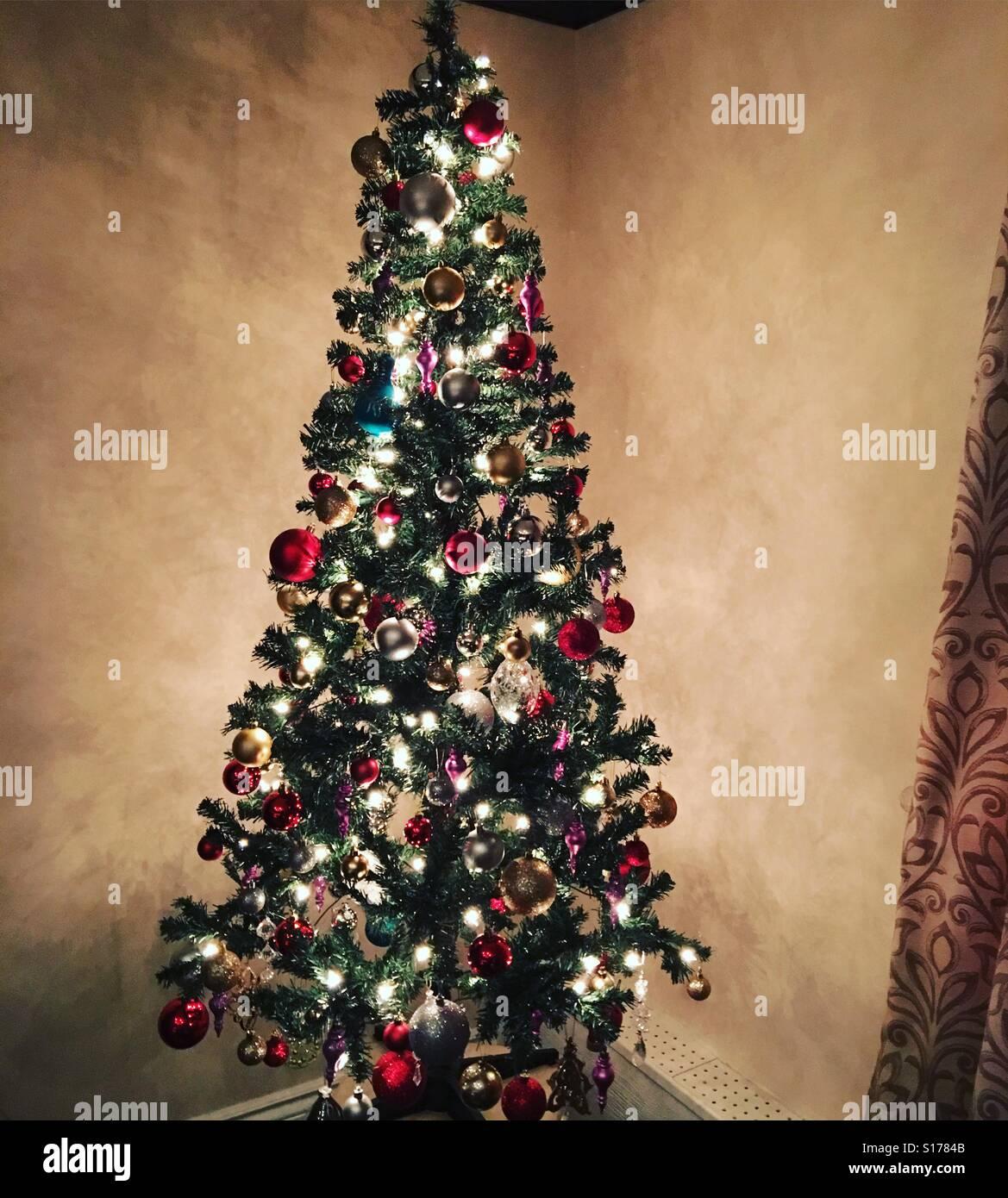 Oh Christmas Tree - Stock Image