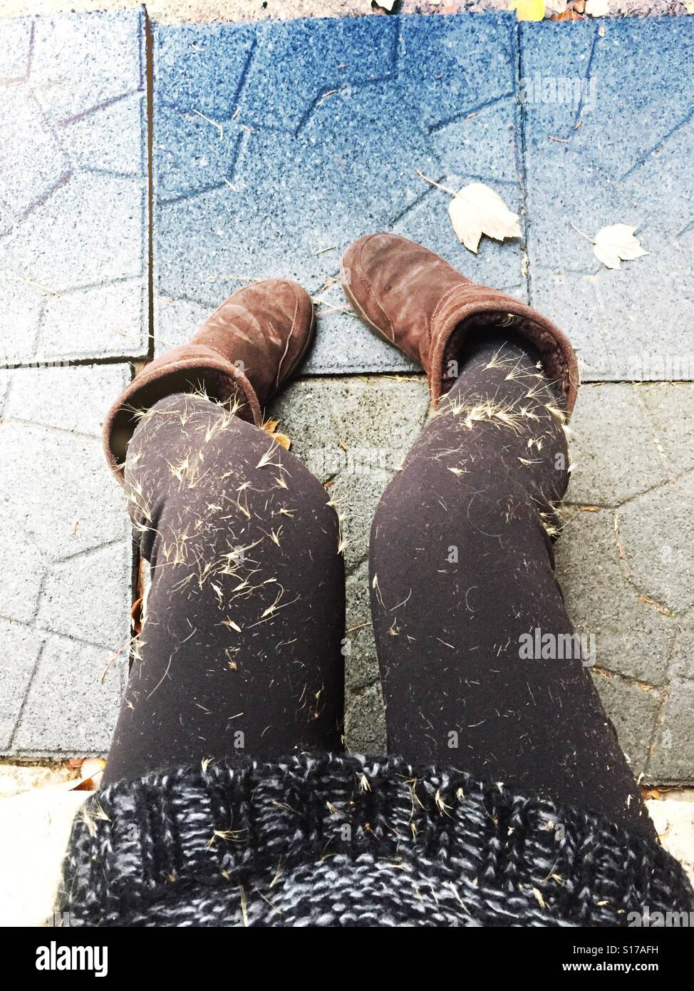 Girl with pants covered in seeds. - Stock Image
