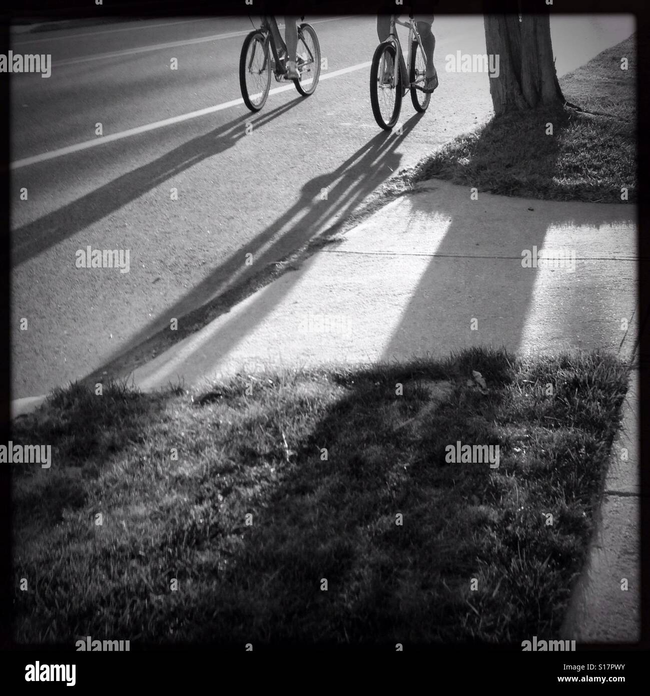 Shadows of two bicyclists on a street with shadows from the sun cast on the pavement of the street - Stock Image