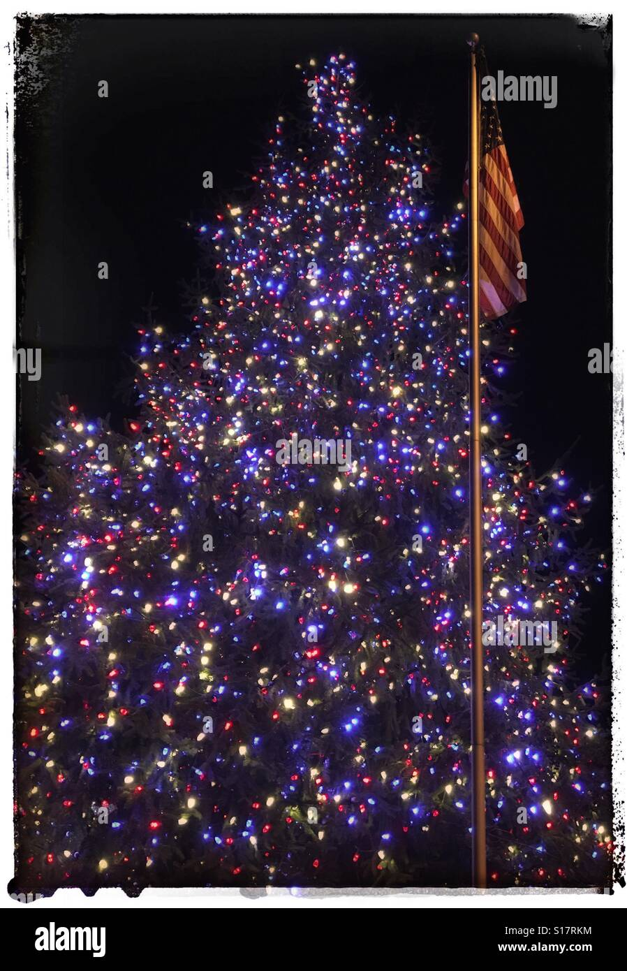 Patriotic Christmas Lights.Patriotic Christmas Tree Stock Photo 310573528 Alamy