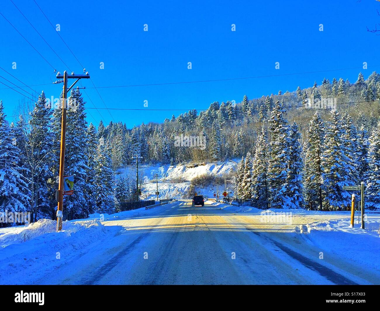 Winter time roadway in late afternoon with tree shadows falling across the road and snow laden evergreens Stock Photo