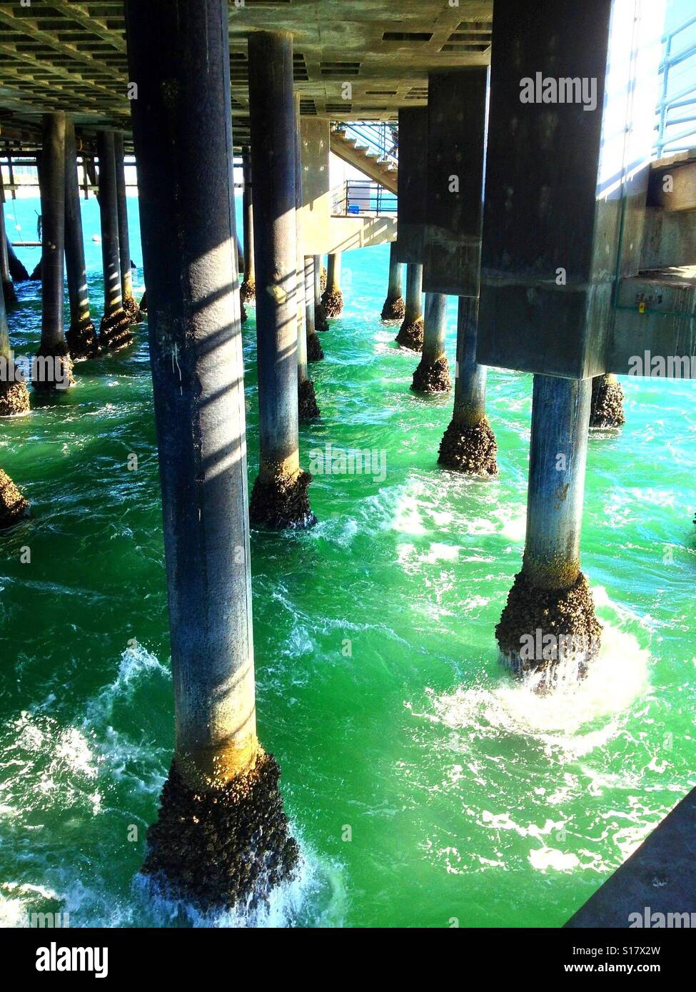 Barnacles and mussels under the pier. Stock Photo
