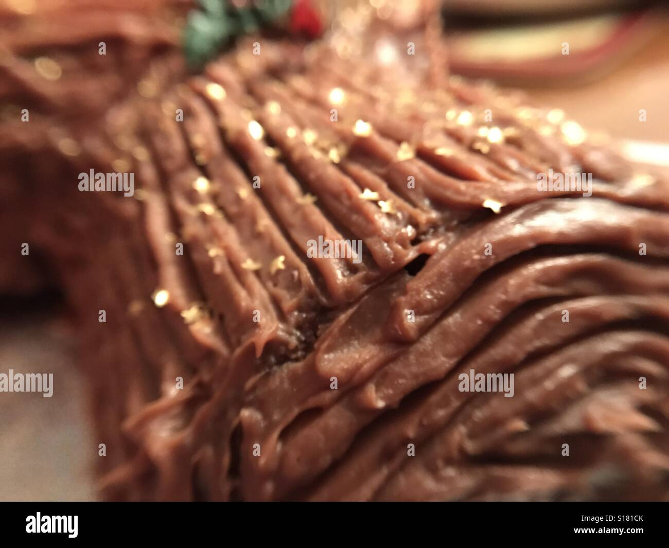 Yule Log - Stock Image