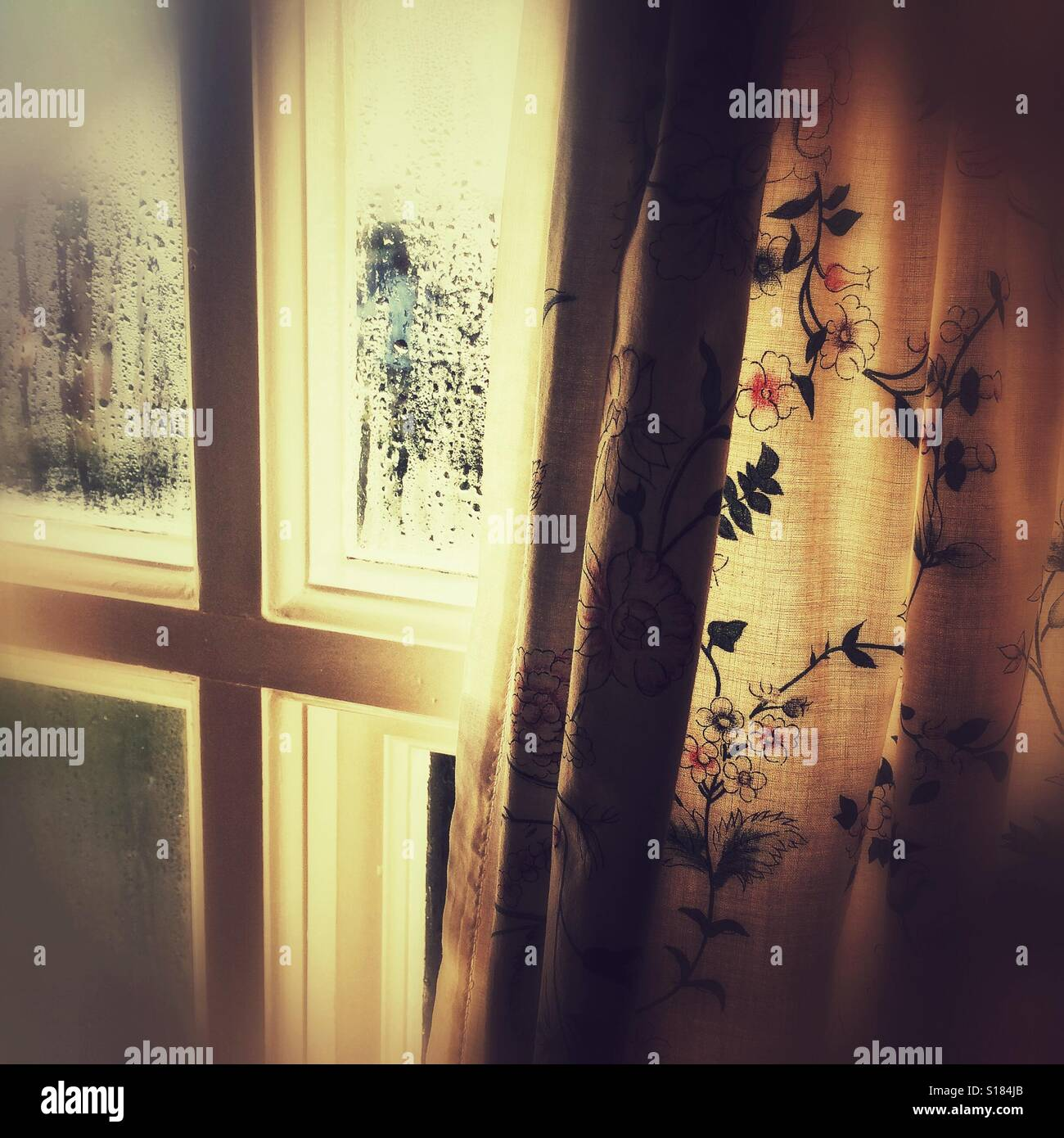A steamy window and curtains - Stock Image