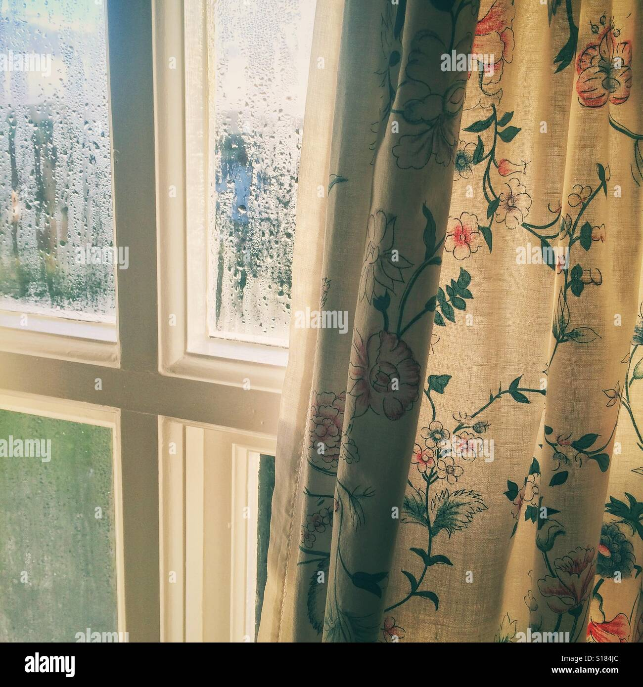 A window and curtains - Stock Image