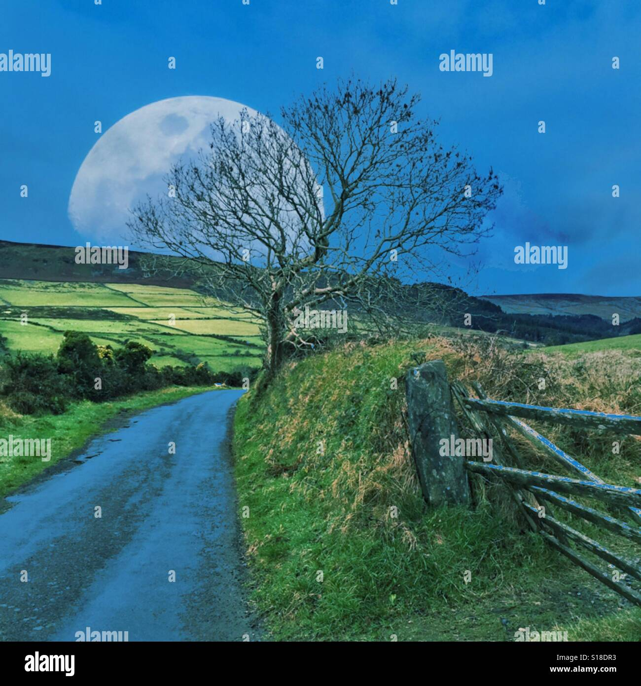 Super moon against rural countryside Stock Photo
