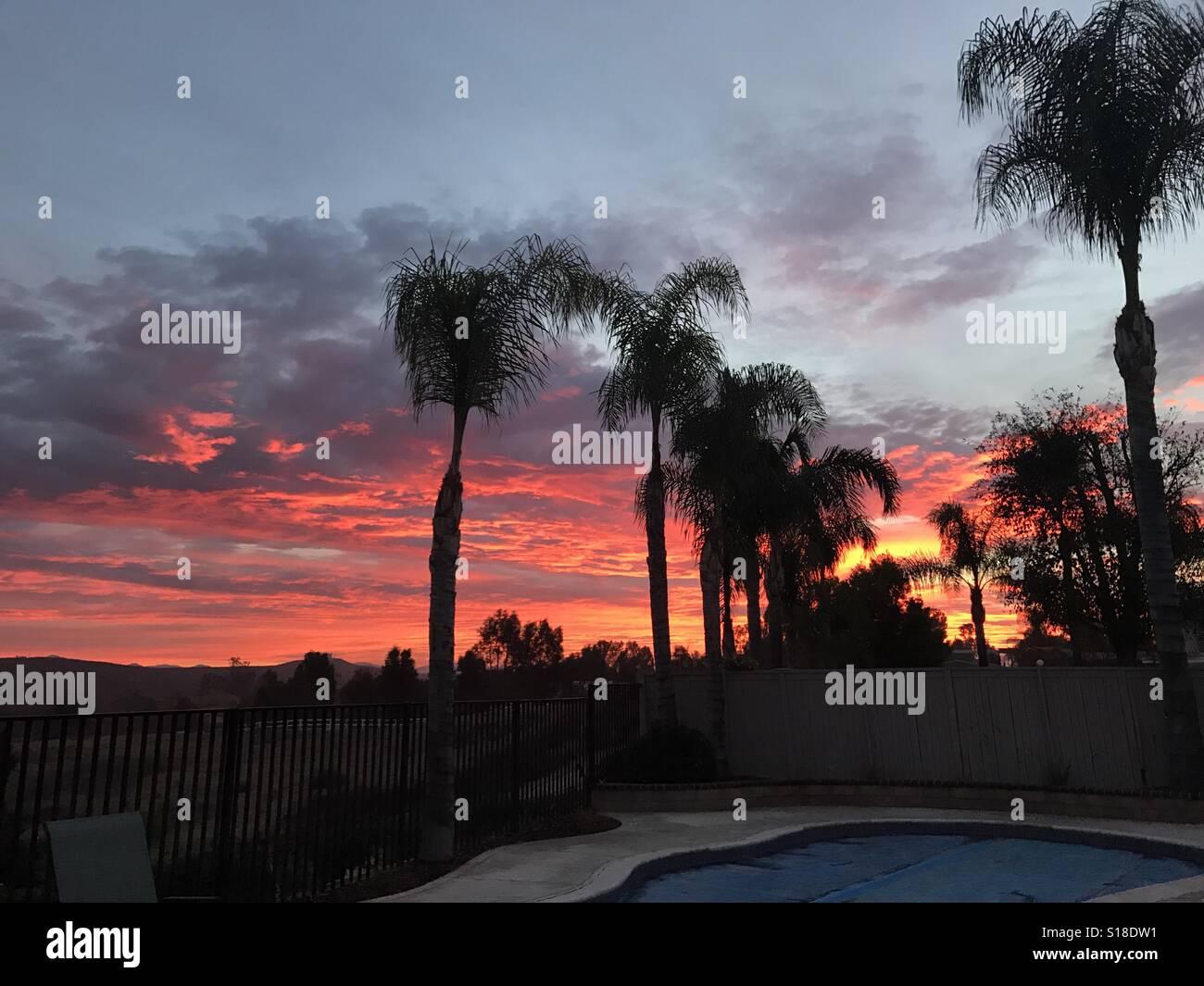 Sunrise behind palm trees Stock Photo