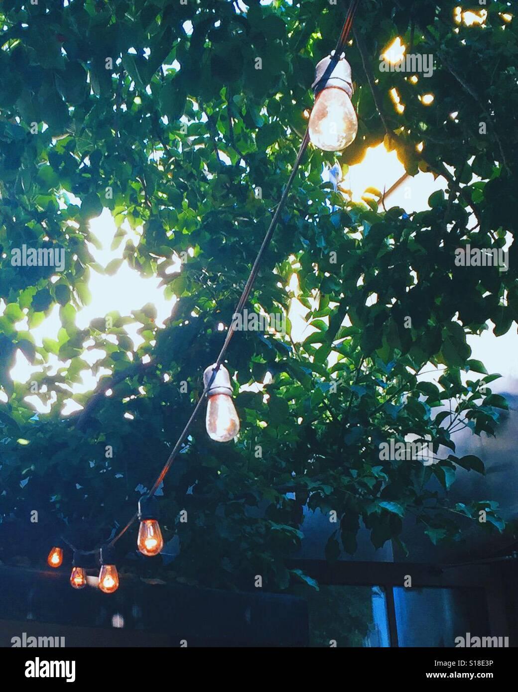 Garden vintage string lights - Stock Image